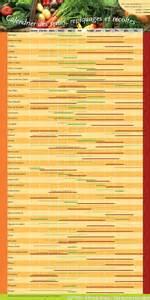 calendrier semis et plantation la ferme du hanneton