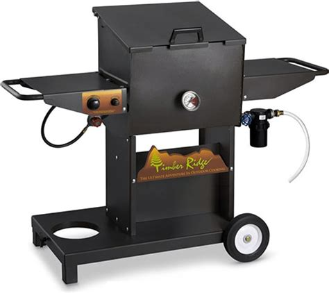 backyard turkey fryer timber ridge backyard host deep fryer gearculture