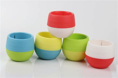 Mini Pot Bunga Hias Kaktus Tanaman 5pcs Mini Pot Bunga Hias Kaktus Tanaman 5pcs Multi Color Jakartanotebook