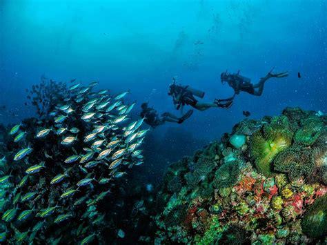 dive phuket padi tecrec technical diving phuket thailand tech