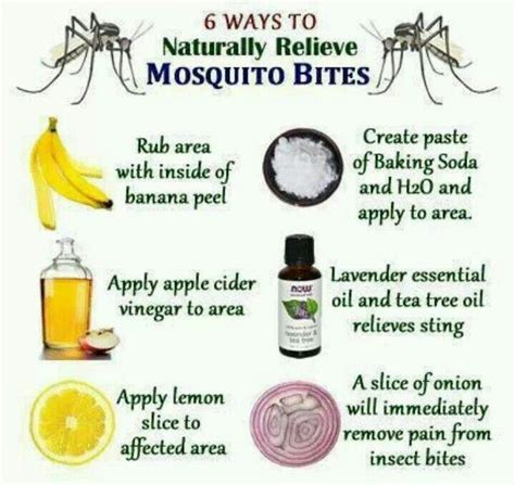 mosquito bite remedies diy and crafts