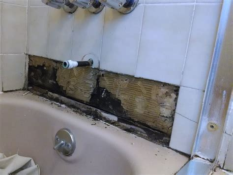 brown mould in bathroom brown mold in bathroom 28 images bathroom mold mold in