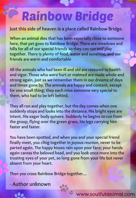 printable version of the rainbow bridge poem rainbow bridge poem for pet loss soulful animal blog
