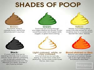 bowel movement colors color of pictures to pin on pinsdaddy