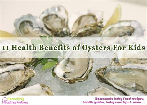 Oyster Health 11 health benefits of oysters for