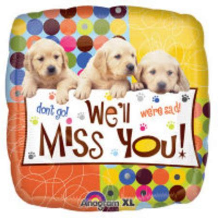 imagenes de i miss you we ll miss you puppies perth wa balloons abuzz