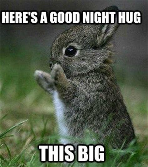 Nighty Night Meme - 980 best images about good night on pinterest good night