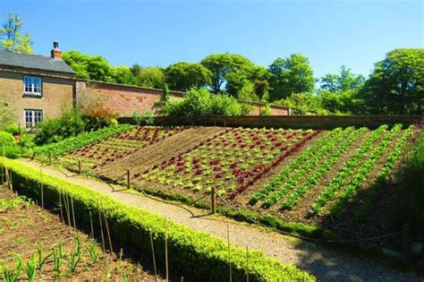 Amazing Vegetable Gardens | amazing walled garden with vegetable beds on an angle