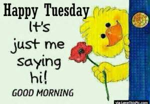 Happy tuesday its just me saying good morning pictures photos and