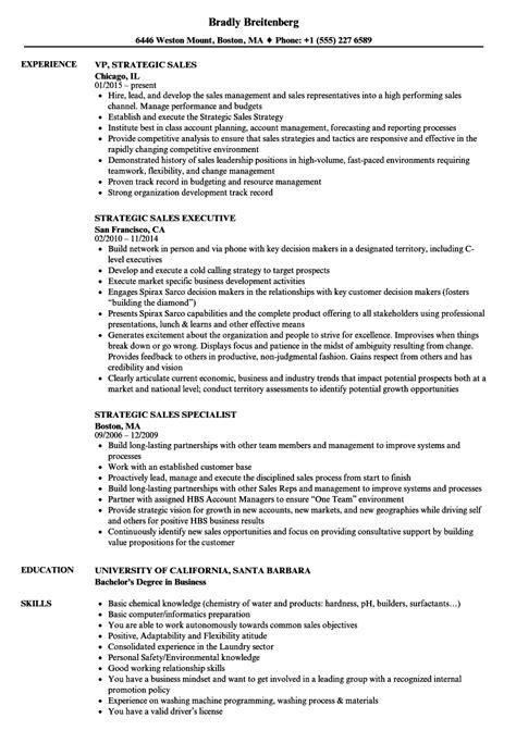 risk management resume sles enterprise risk management resume 02 arena exles