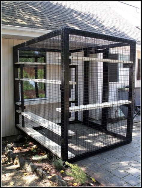 cat patio a husband and want privacy on their porch but instead of hanging curtainsthis is amazing