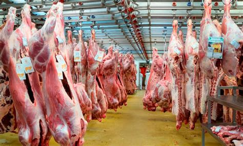 paritarias 2016 federacion de la carne paritarias gremio de la carne 2016 el precio de la carne