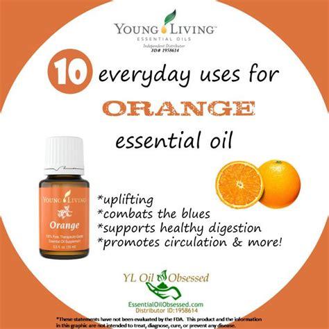 Living Essential Orange the 25 best living orange ideas on