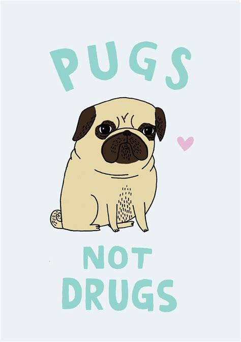 pugs and drugs a5 print pugs not drugs