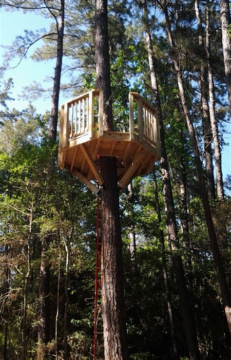 a octagon tree platform with a zipline exit client