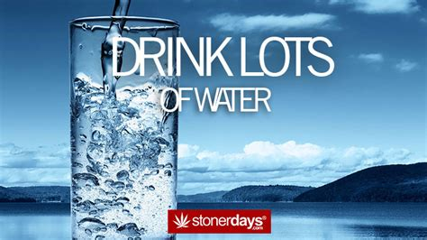 lots of water the stoner s guide to road trips