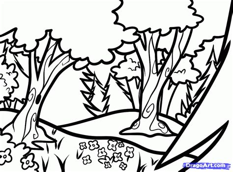 rainforest background coloring page how to draw forests forest backgrounds step by step