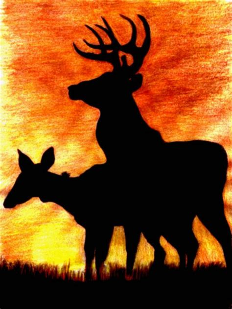 how to draw a sunset with colored pencils print of colored pencil drawing of a buck and doe deer
