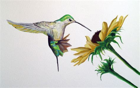 tutorial watercolor hummingbird image gallery hummingbird paintings