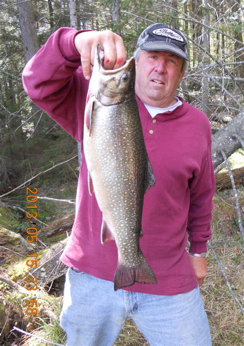 Nyc Records Nys Record Brook Trout In Silver Lake Wilderness The Adirondack Almanack