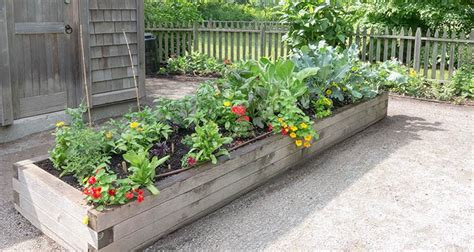 why raised garden bed liners are a necessary layer
