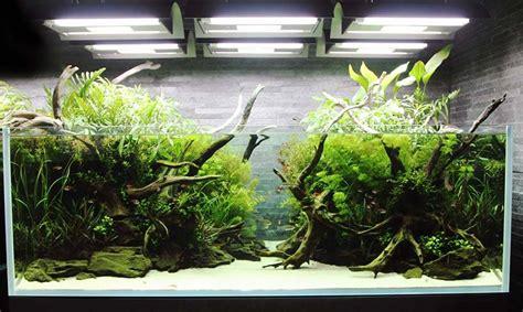 iluminacion de peceras iluminaci 243 n acuario luz para pecera 2018 acuario3web