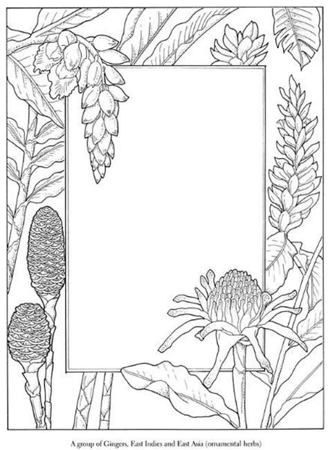 blank coloring pages for adults 140 best bos coloring blank frames images on