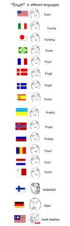 Meme Language - fruit in different languages meme by myakki on deviantart