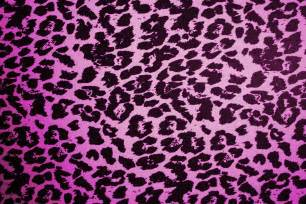 Pink Zebra Print Wallpaper For Bedroom - animal print desktop backgrounds wallpaper cave