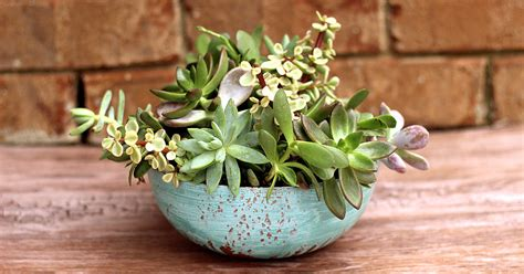 planters for succulents faux aged copper succulent planter housewarming gift