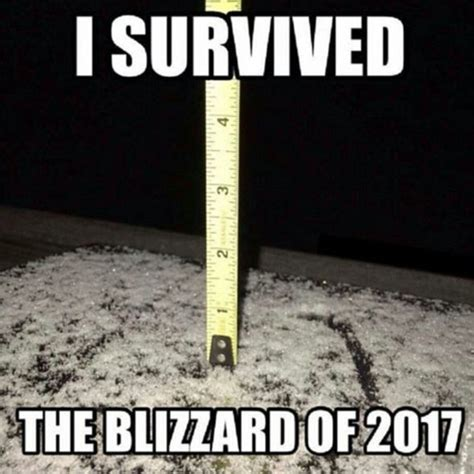 Blizzard Meme - snow in london capital erupts with excitement but weather