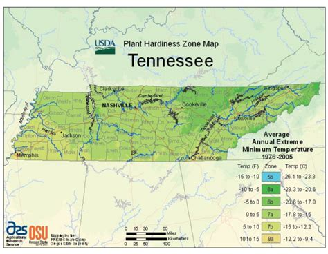 Tennessee: Vegetable Planting Calendar