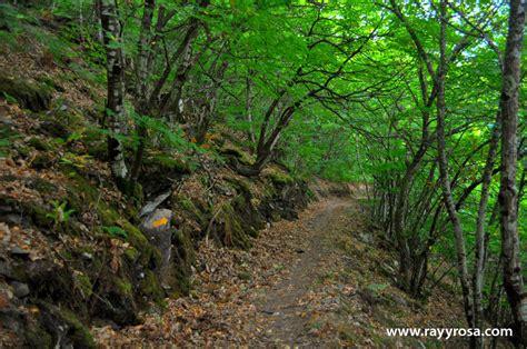 camino primitivo camino primitivo