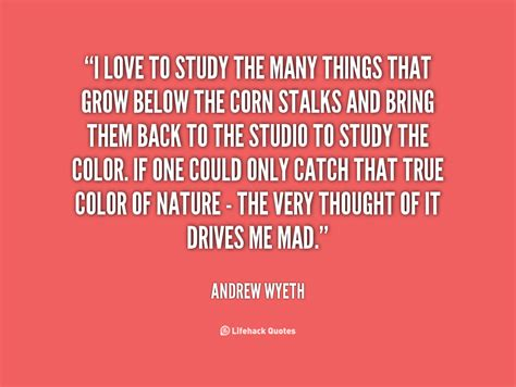 Study Quotes Study Quotes Quotesgram