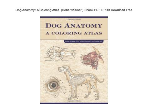 anatomy coloring book ebook anatomy a coloring atlas robert kainer ebook pdf