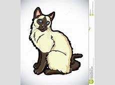 Himalayan Cat clipart, Download Himalayan Cat clipart Free Clipart Of Siamese Cats