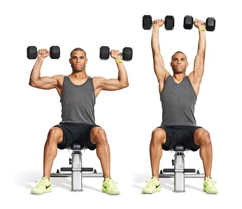 bicep dumbbell exercises useful facts you might not