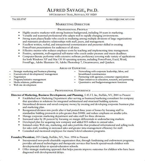 templates for executive cv 10 executive resume templates free sles exles
