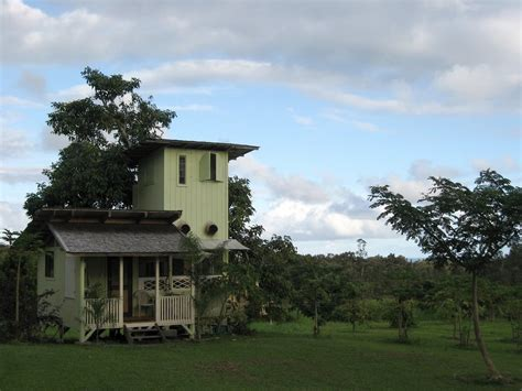 avocado house avocado tree house your hawaiian retreat