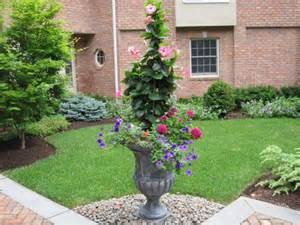 planting boxes and large urns plant want me