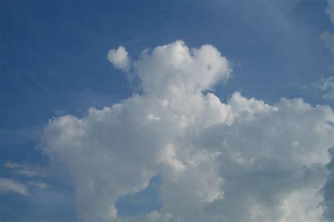 imagenes raras de nubes m 225 s nubes de formas curiosas nuestroclima com