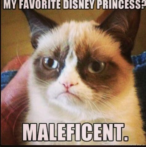 Grumpy Cat Coma Meme - the 25 best grumpy cat disney ideas on pinterest grumpy