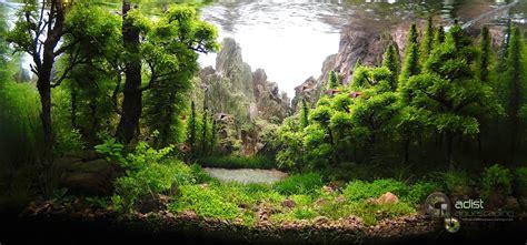 membuat background aquascape resultado iaplc 2014 aquaa3 aquarismo