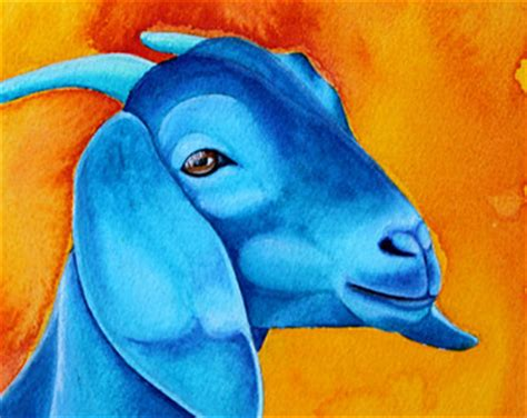 Blue Goat blue goat etsy