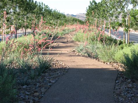 informal decomposed granite path rustic landscape