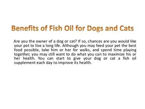 benefits of fish for dogs what should diabetics eat fish benefits for dogs best style for apple shaped