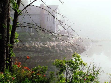 maine seaside cottage in fog photograph by patty gross