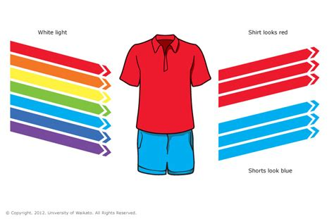 what do the different colors of visible light represent shirt and blue shorts science learning hub
