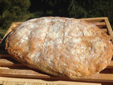 ricetta pane toscano fatto in casa pane toscano pane senza sale