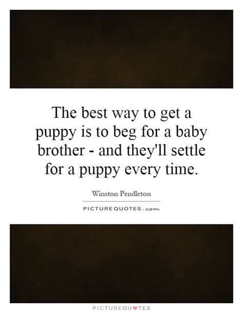 best time to get a puppy puppy quotes puppy sayings puppy picture quotes